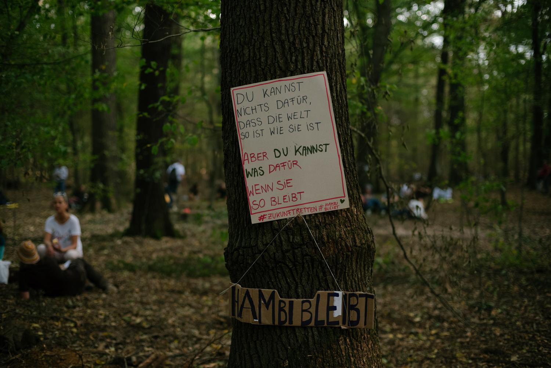 sized-ecosia-hambach-forest-germany-coal-rwe-15