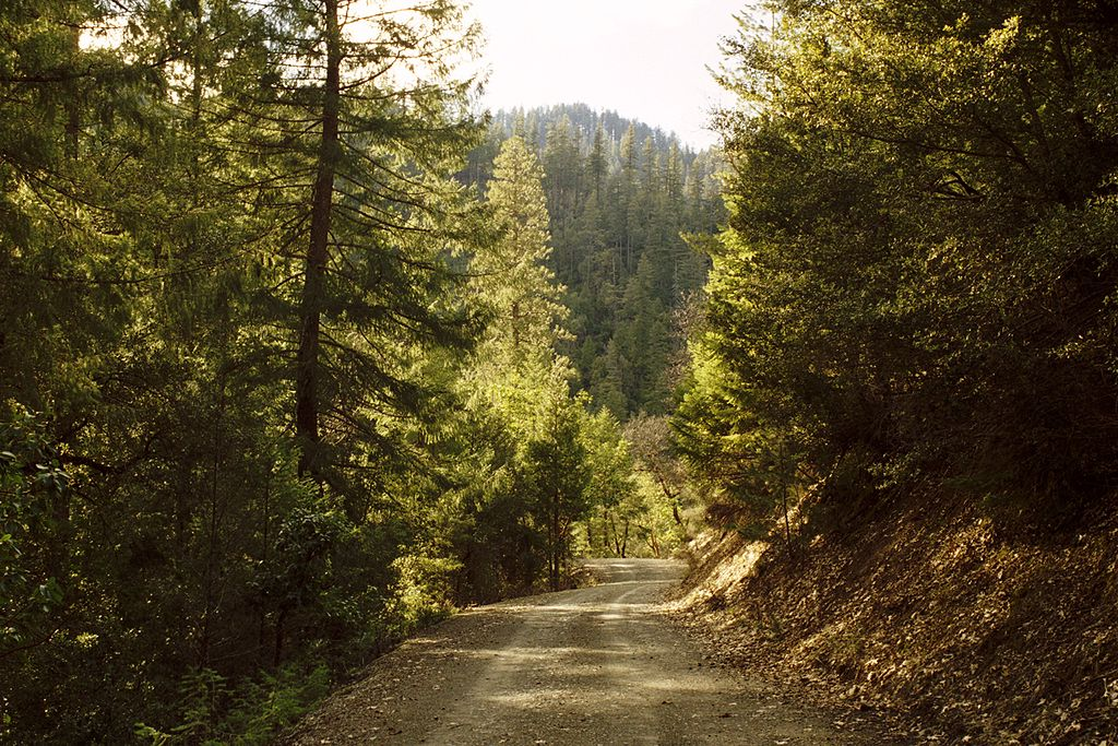 1024px-Klamath_National_Forest-16N05_March_05--1-